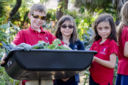 Students harvest for those in need